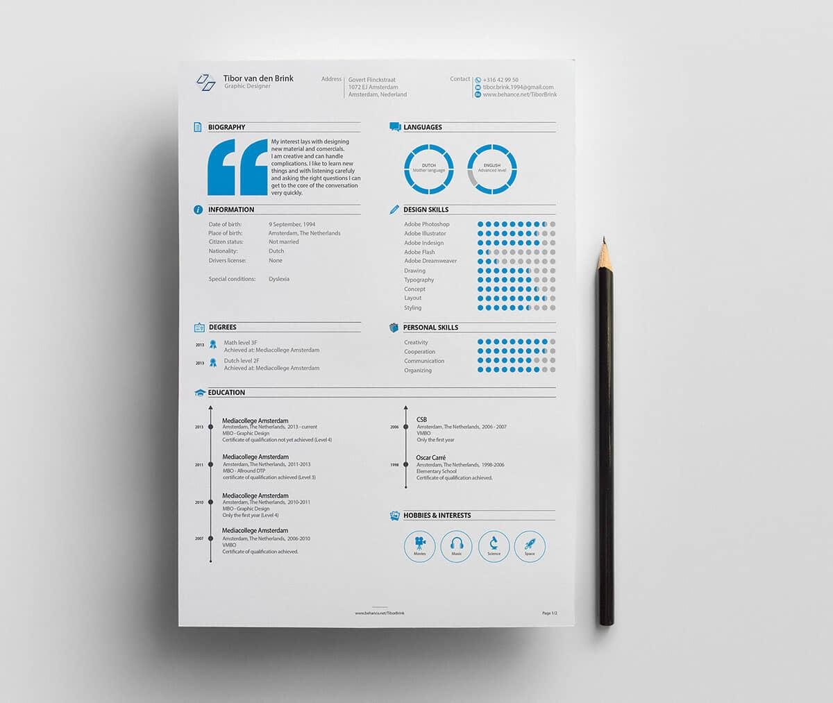 Example Of Resume Infographic Template With Blue Details