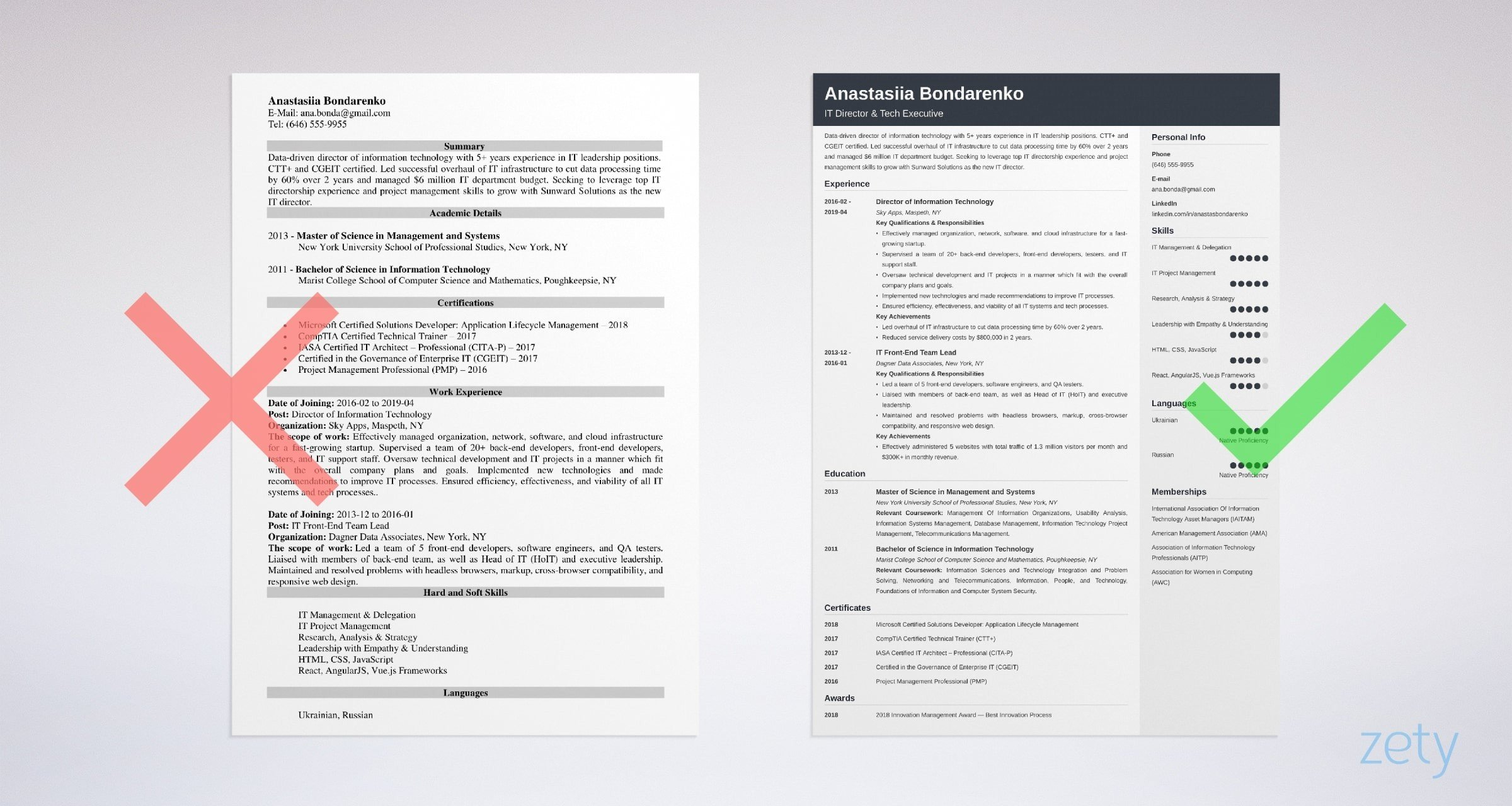 it director resume templates