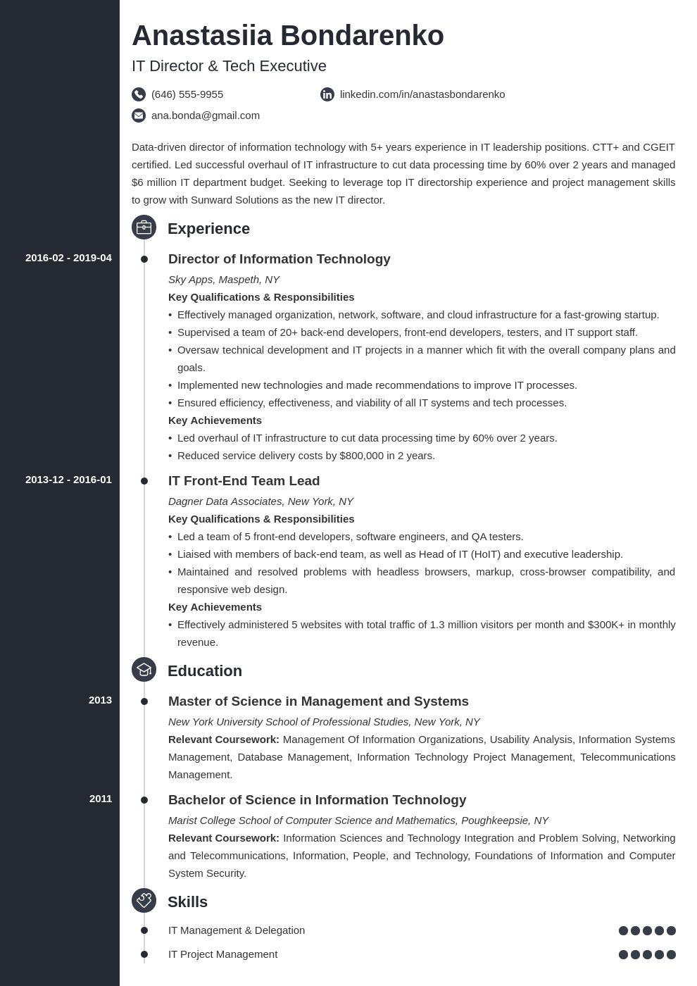 it director resume example template concept