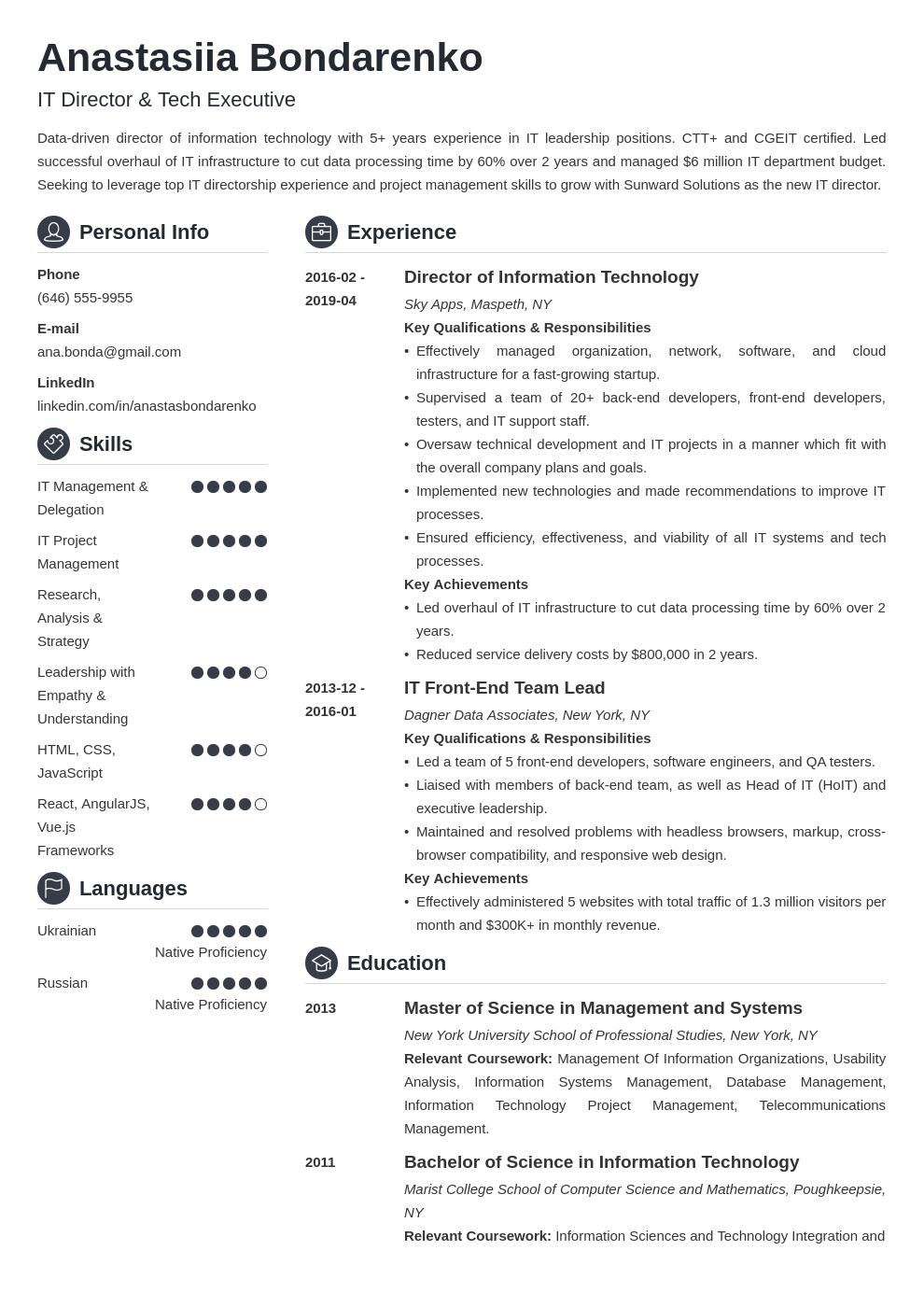 it director resume example template crisp