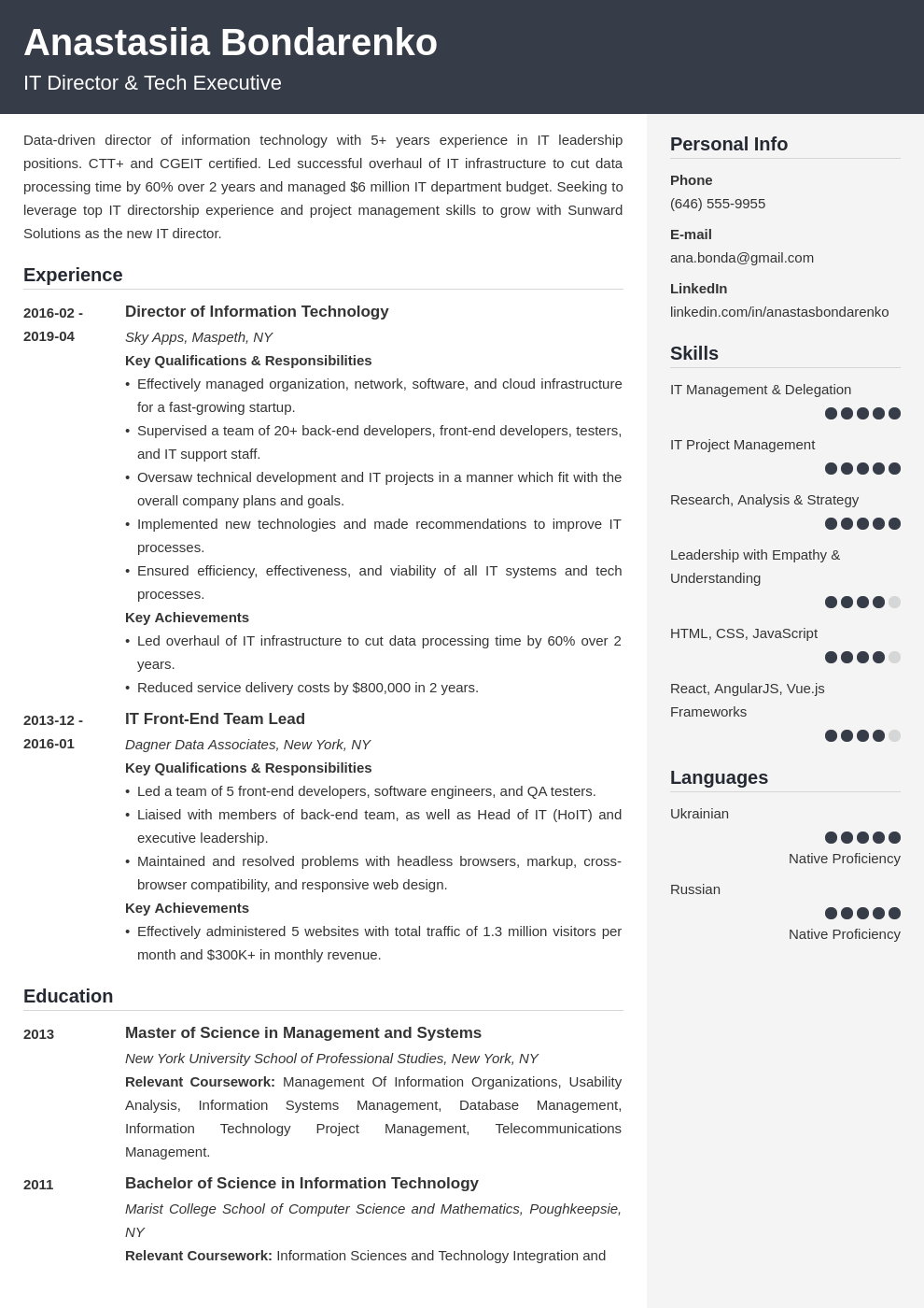 it director resume example template cubic