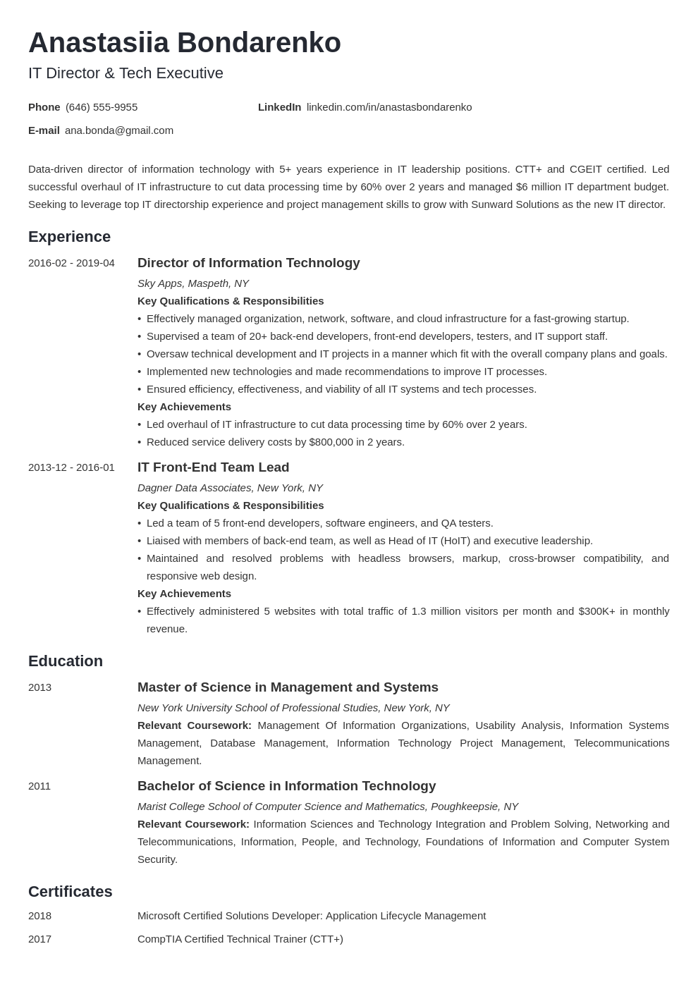it director resume example template minimo