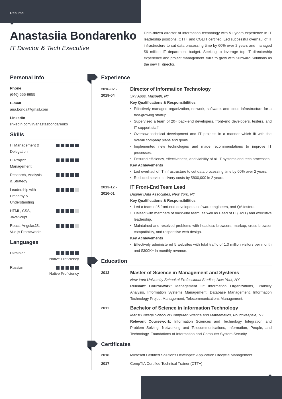 it director resume example template modern
