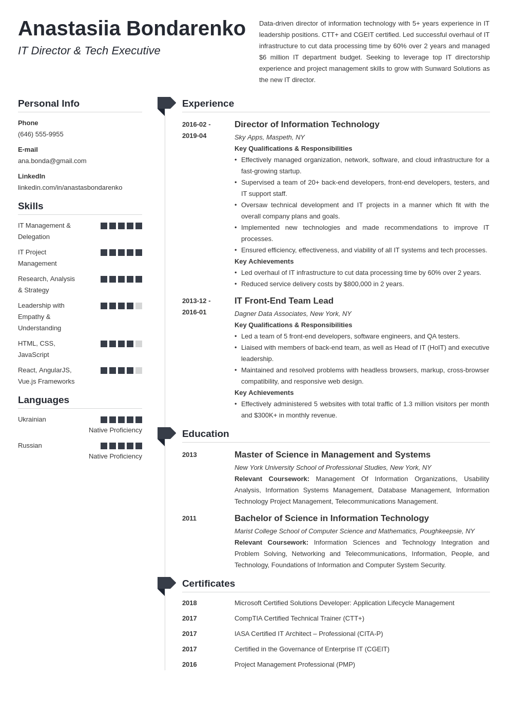 it director resume example template muse