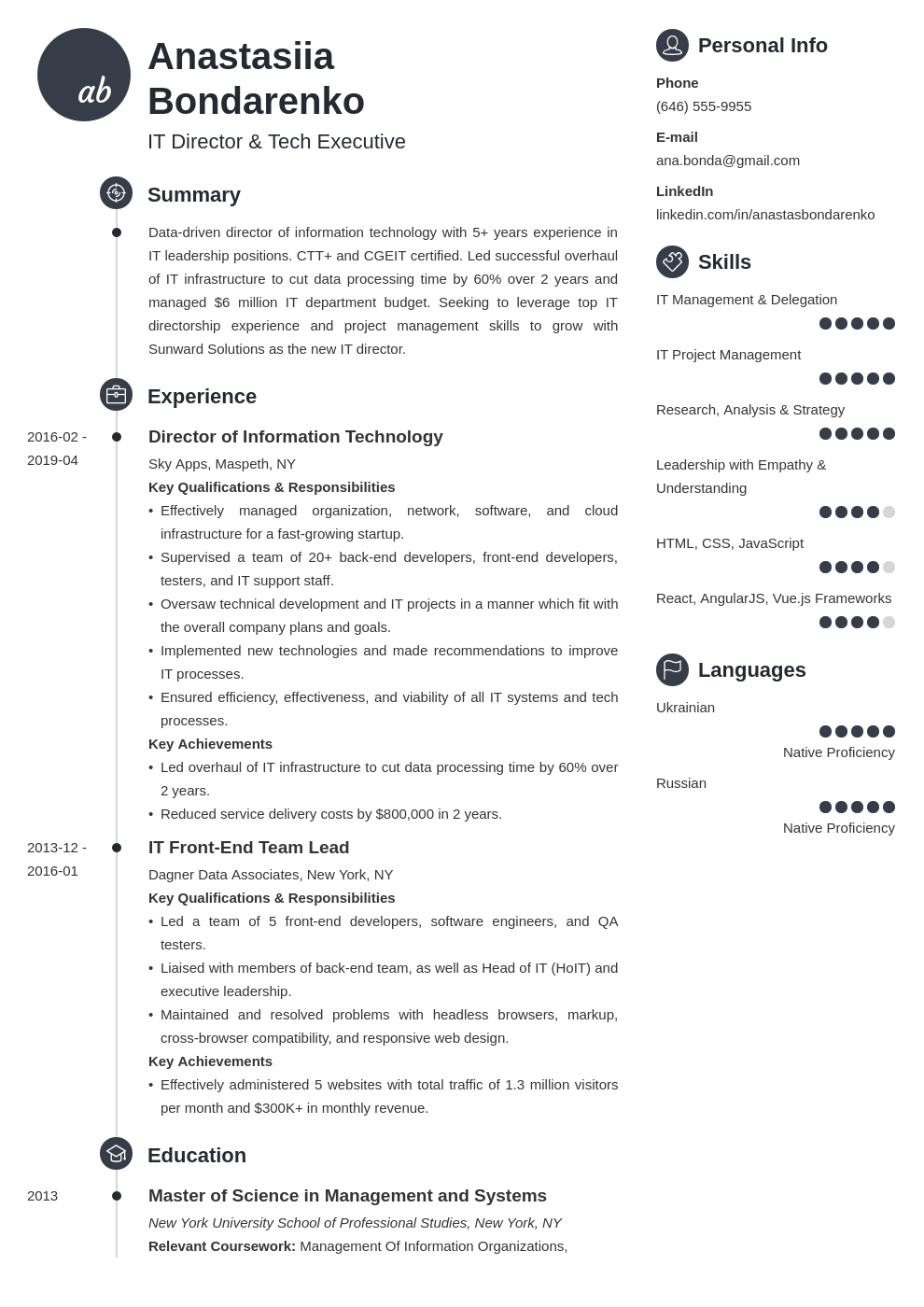 it director resume sample  writing guide 20 tips