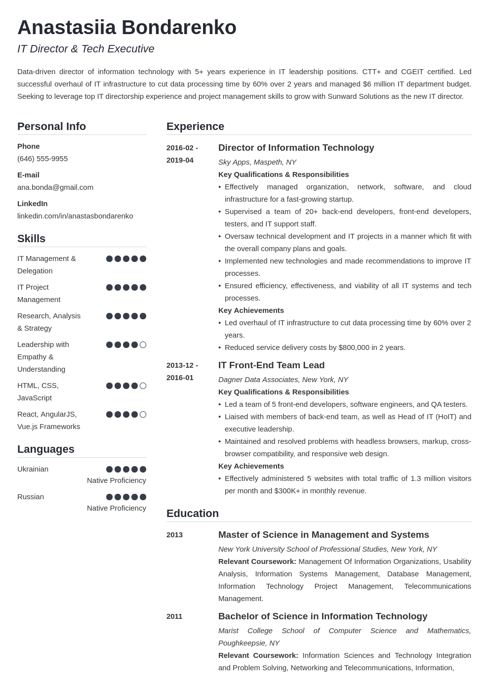 it director resume example template simple
