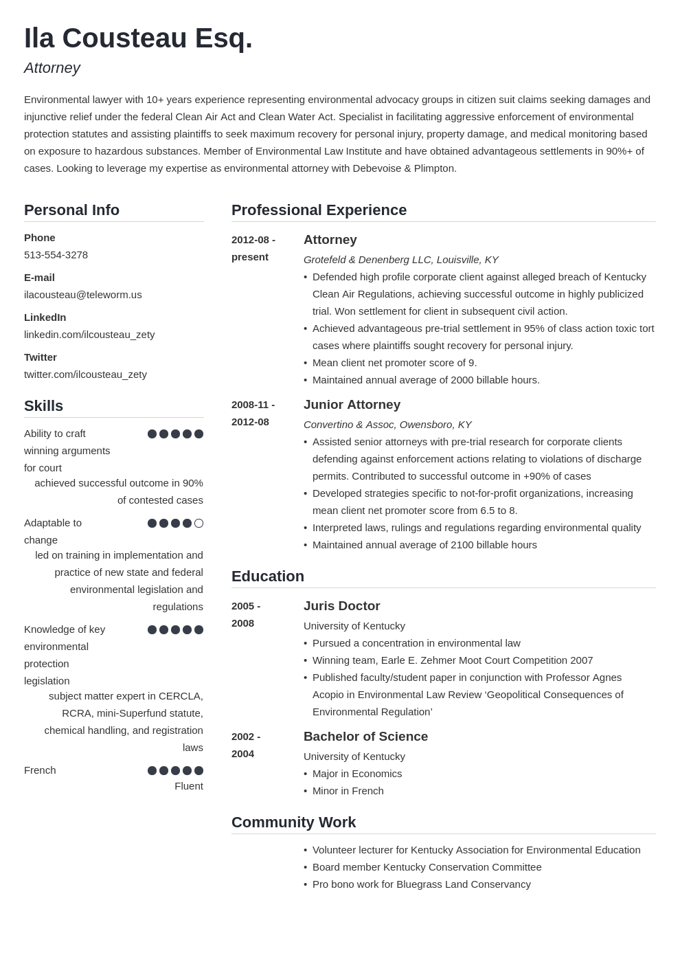 legal resume example template simple