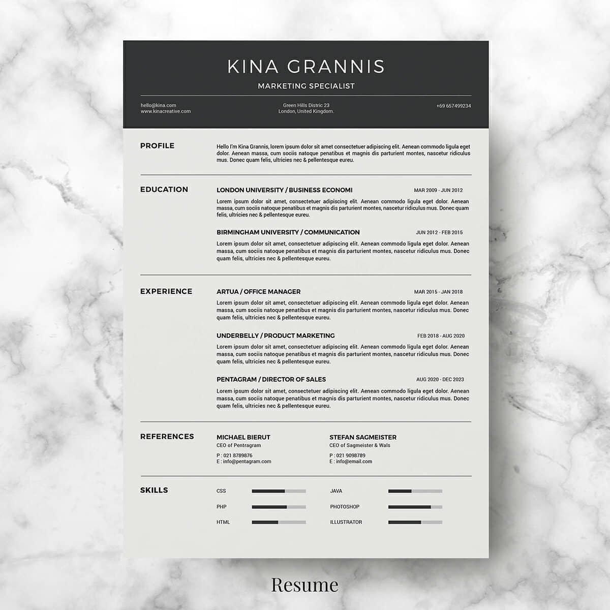 15  clean minimalist resume templates  sleek design
