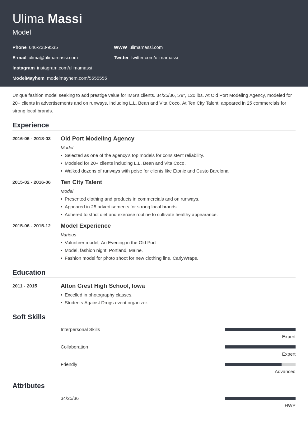 model resume example template influx