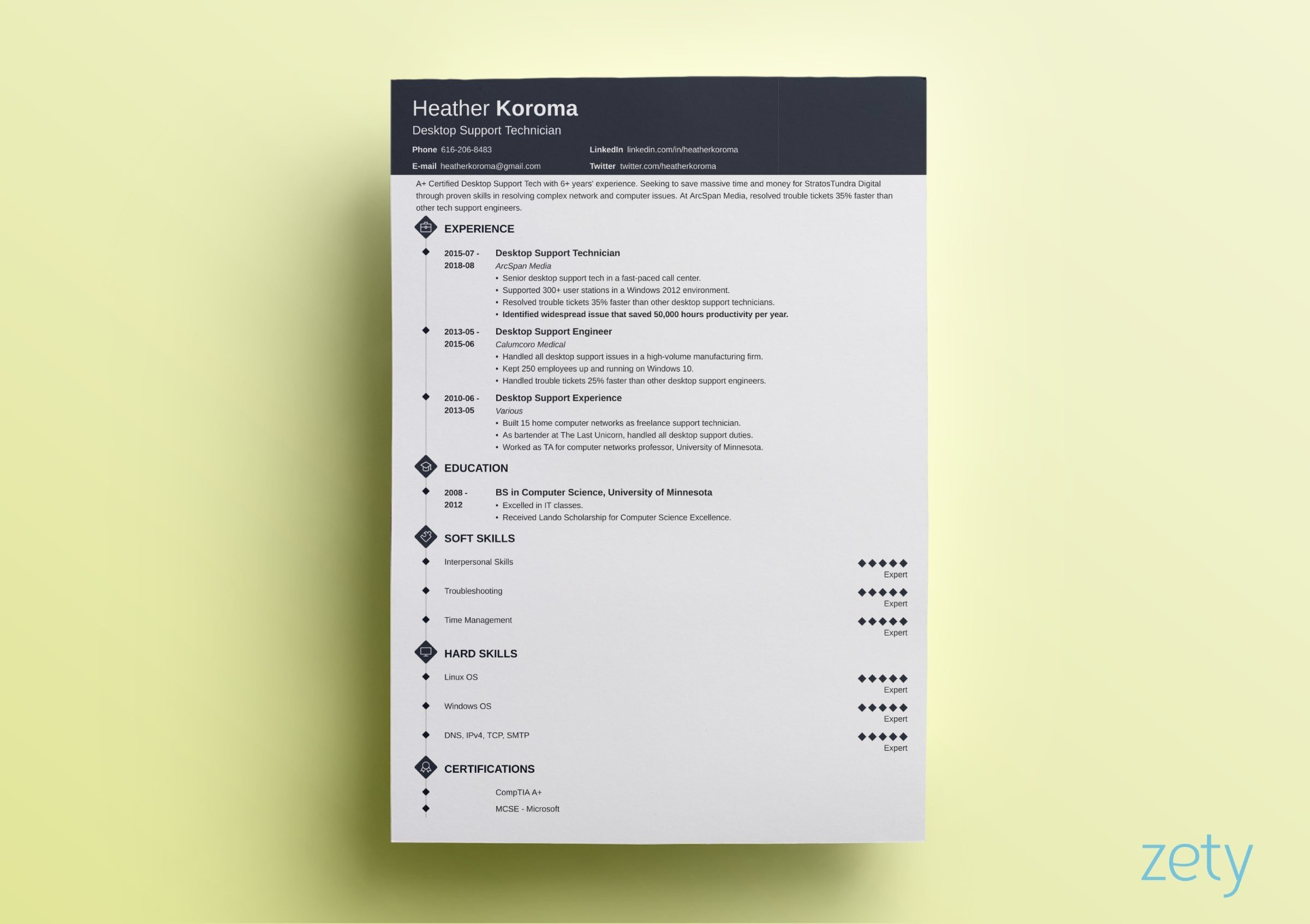 Modern Resume Template Sample