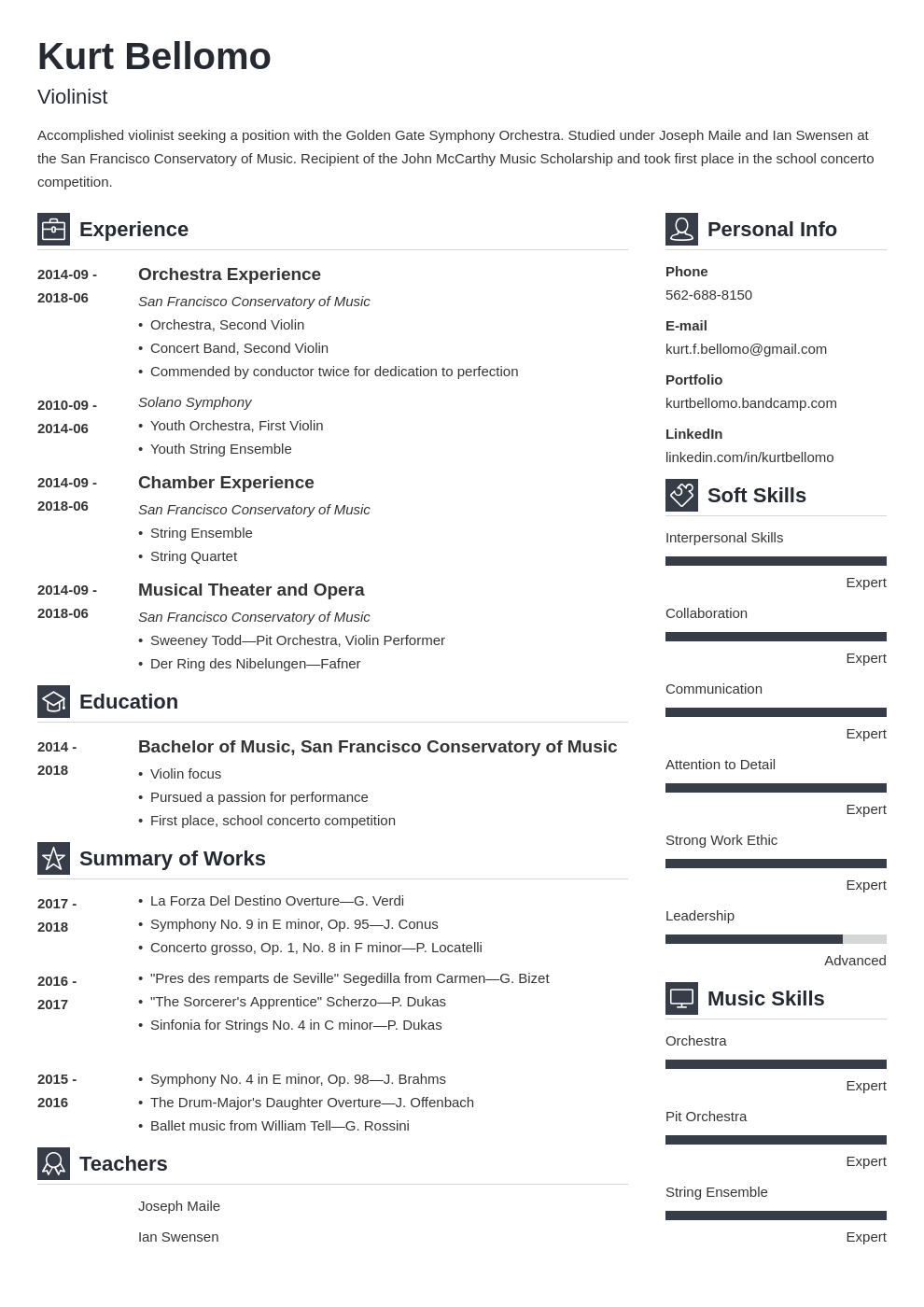 music resume example template vibes