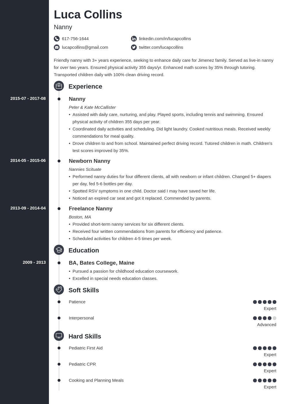 nanny resume example template concept