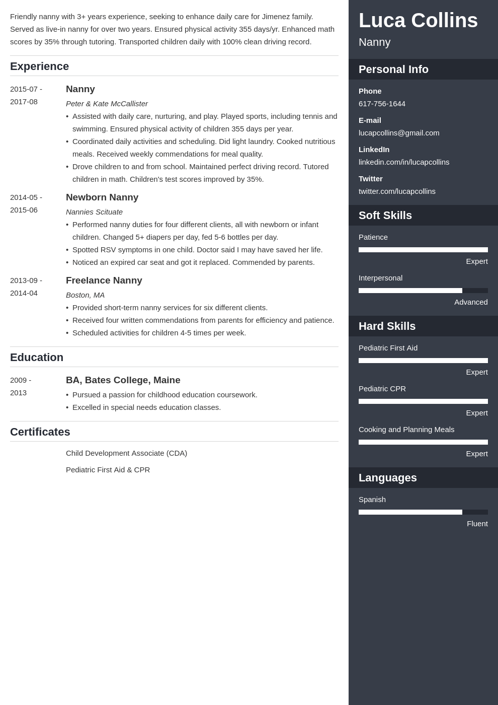 nanny resume example template enfold