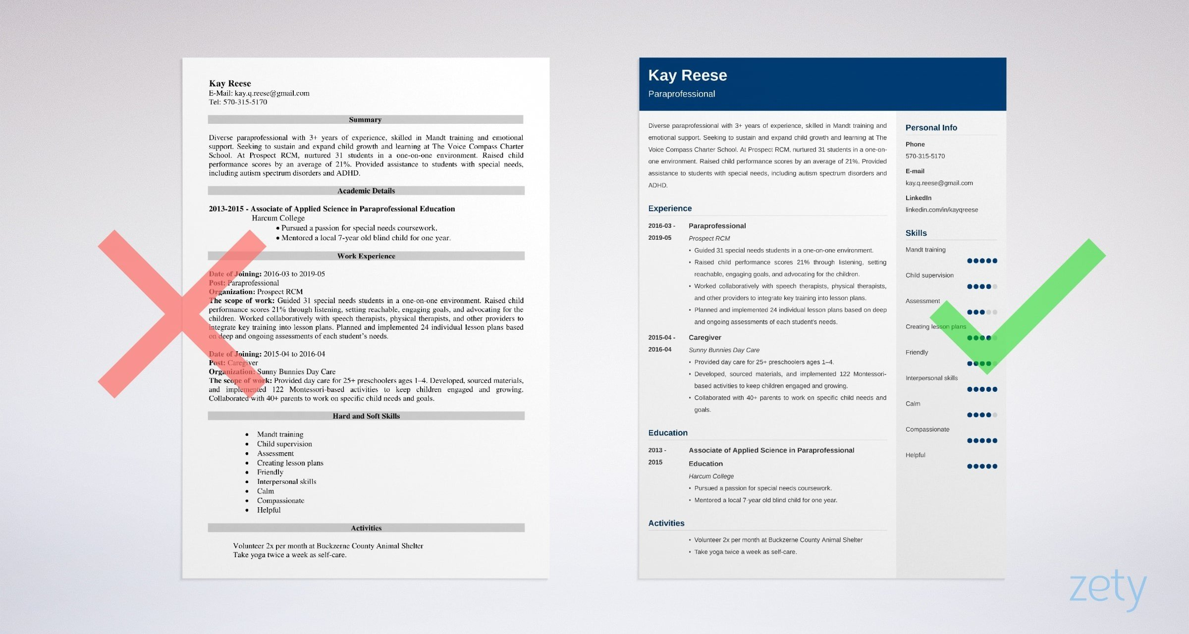 Paraprofessional Resume Sample And Full Writing Guide 20 Tips