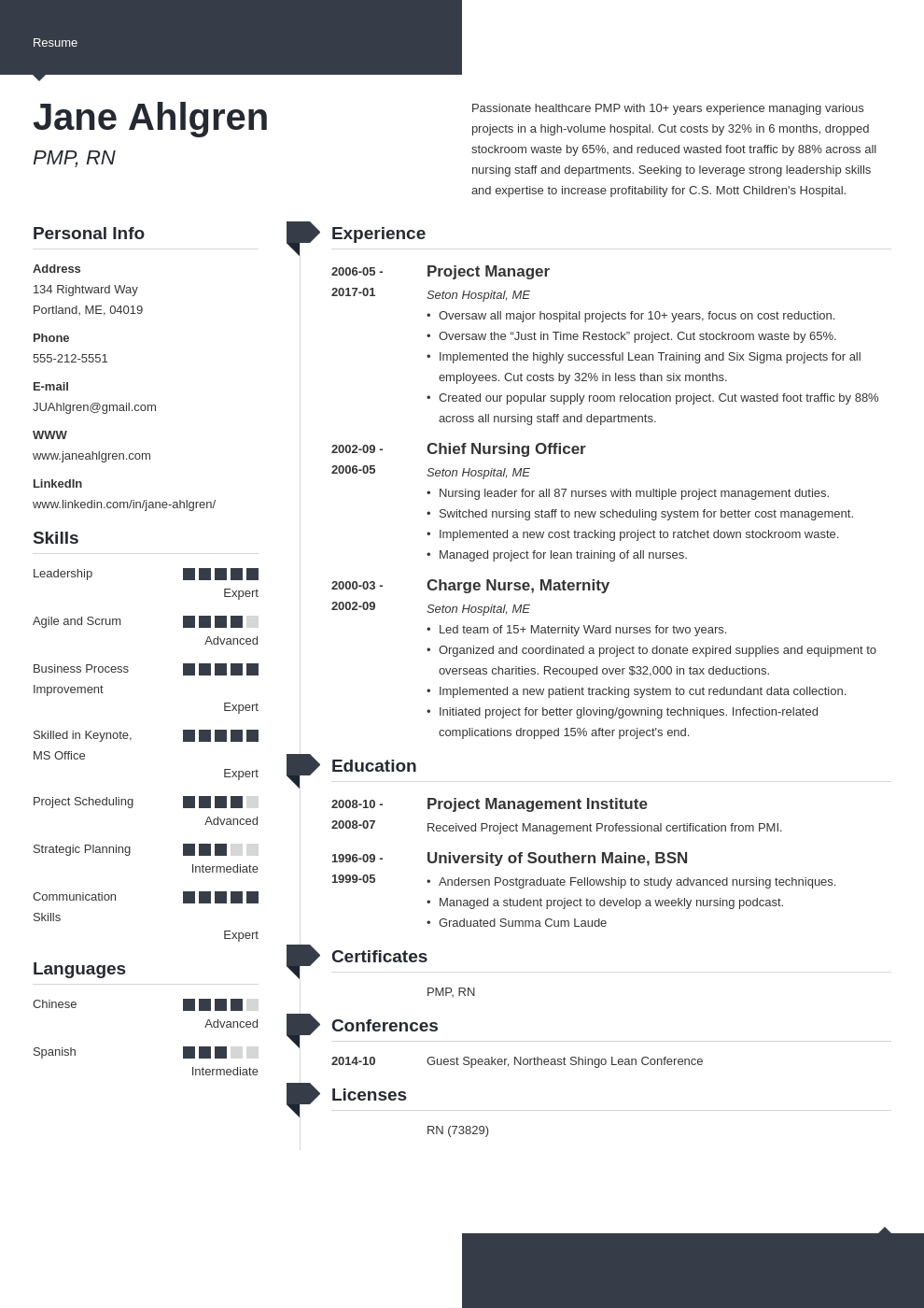 plain text resume example template modern