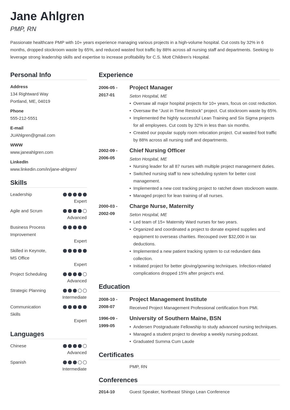 plain text resume example template simple
