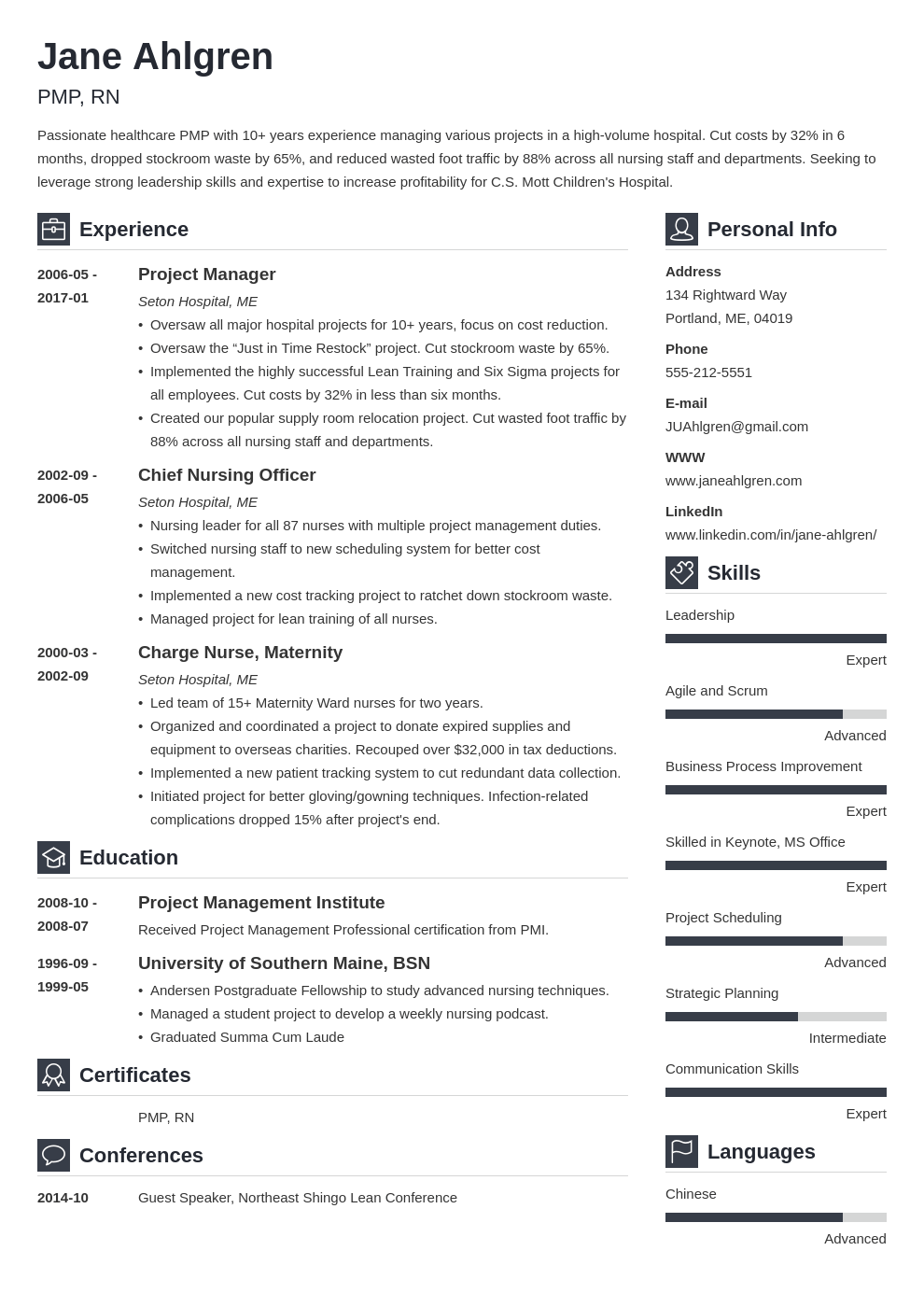 plain text resume example template vibes