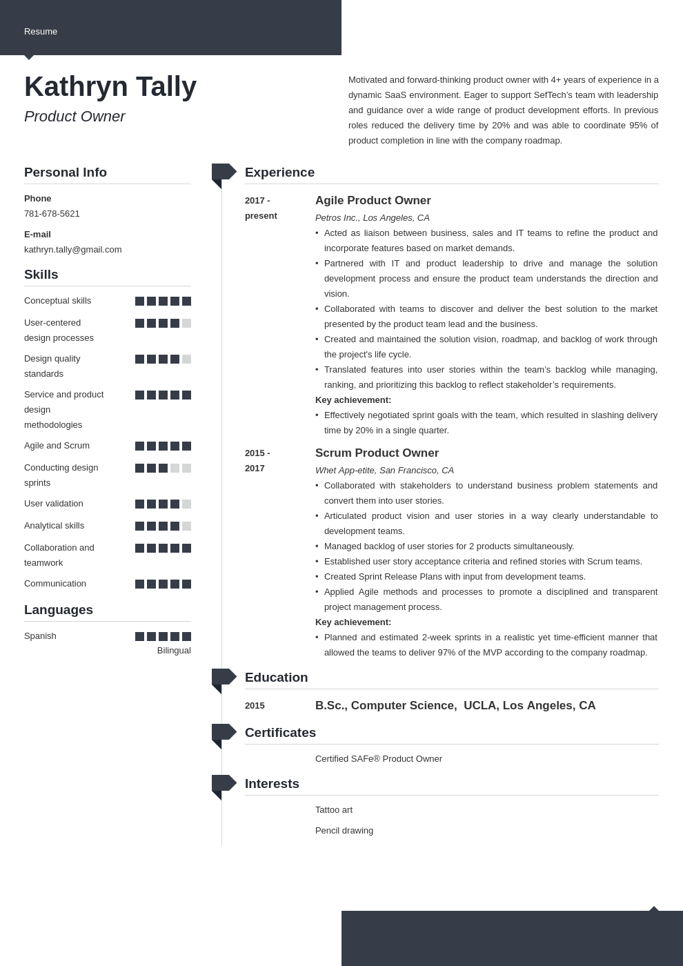 product owner resume example template modern
