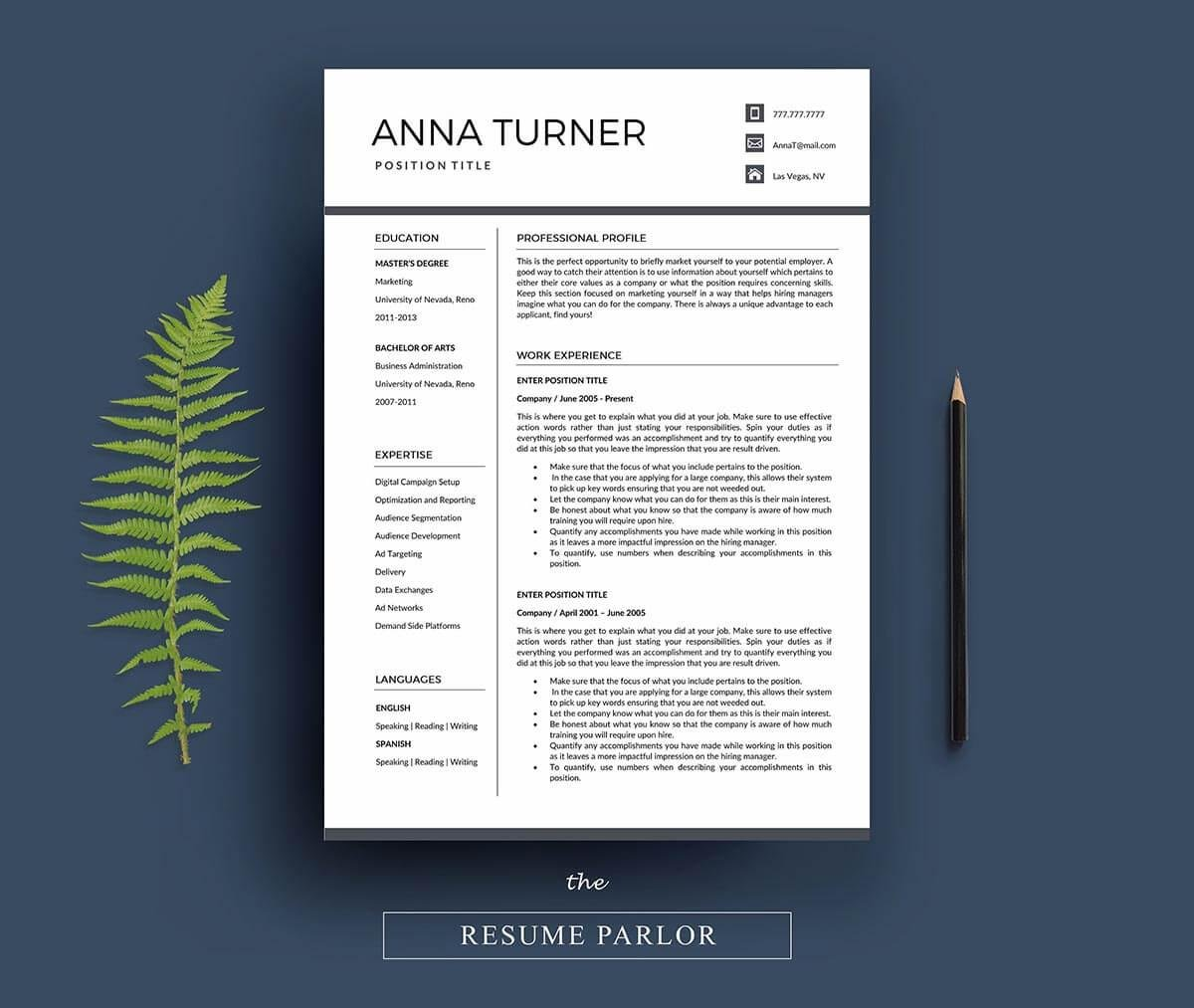 example of a professional resume