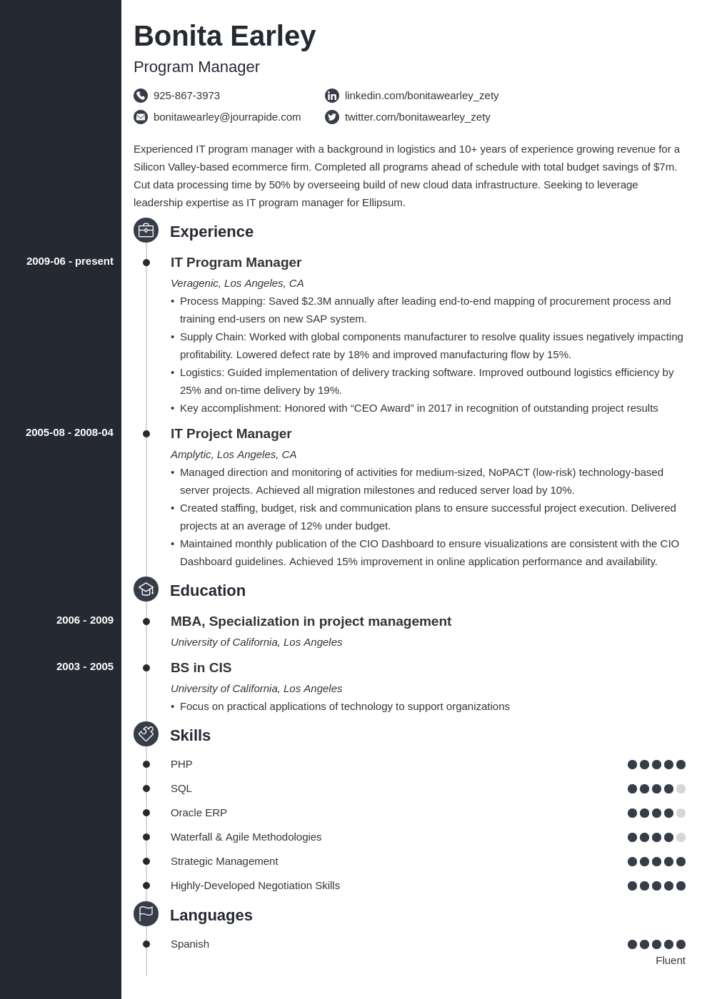 program manager resume example template concept