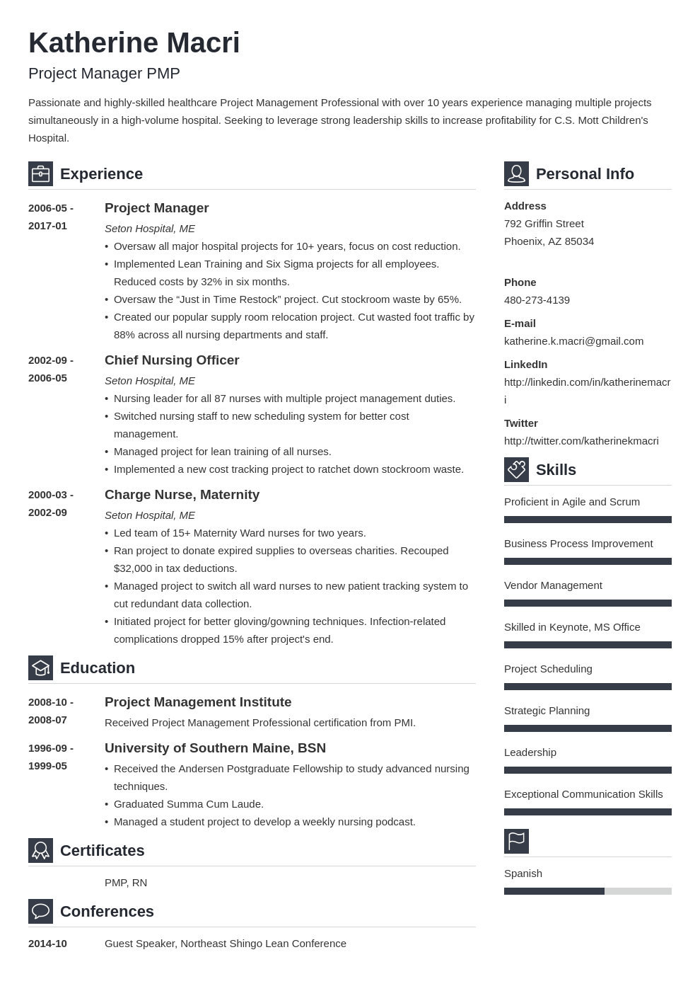 project manager resume template vibes