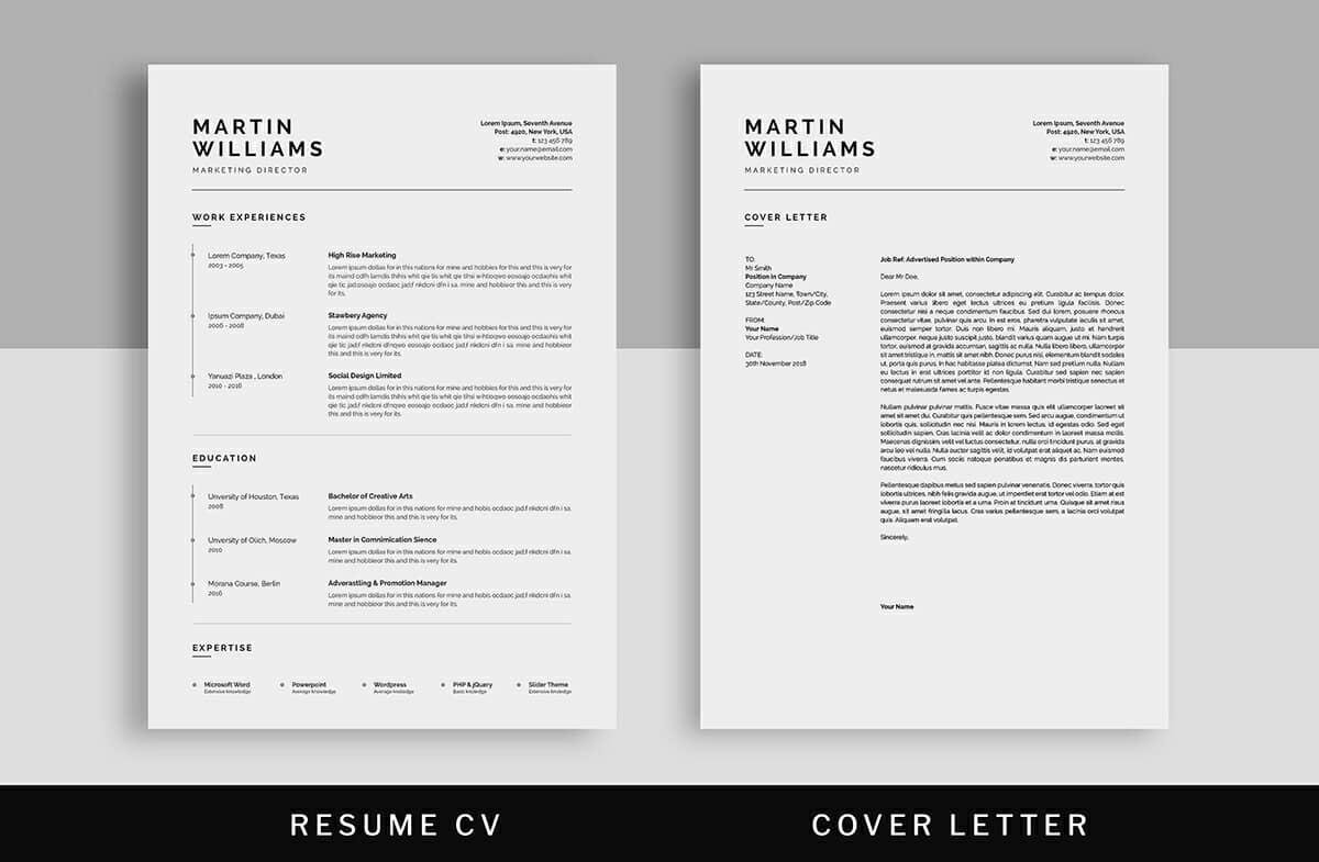 well designed resumes with timeline