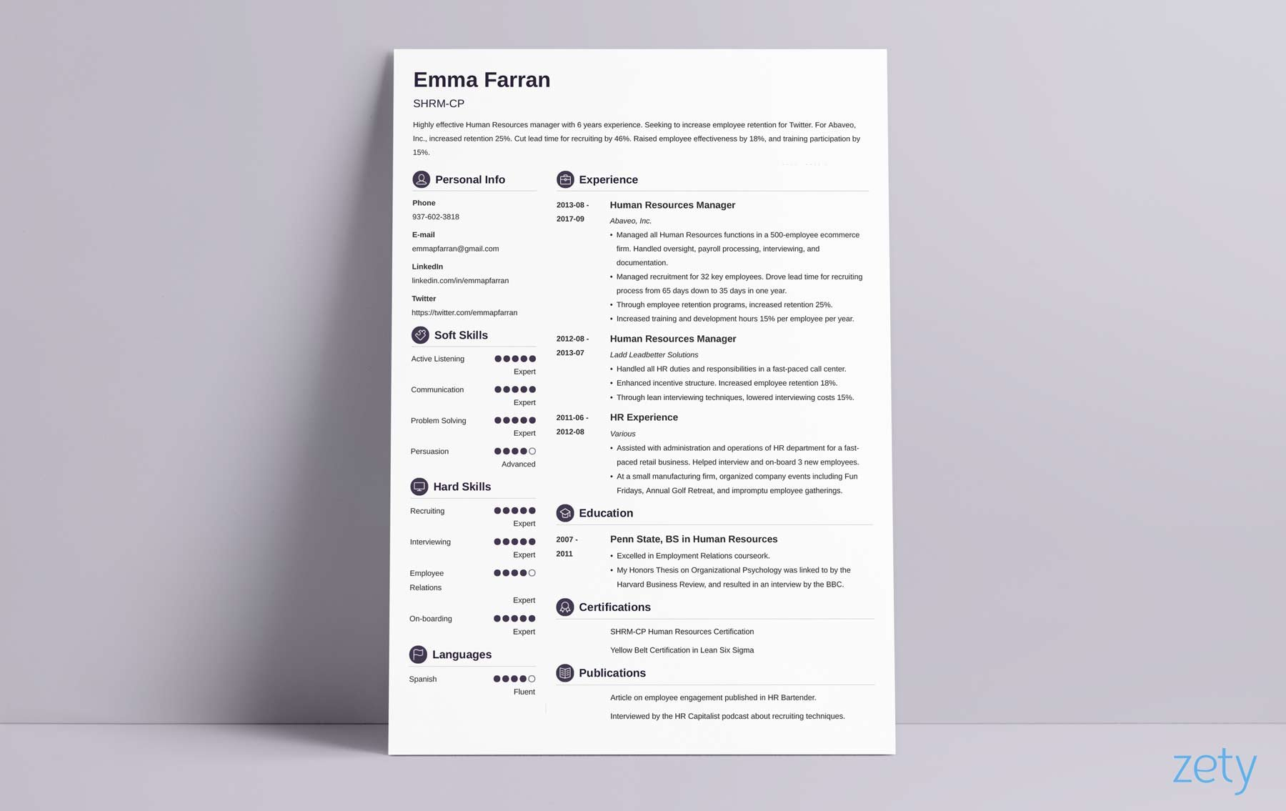 best resume design with round section tags