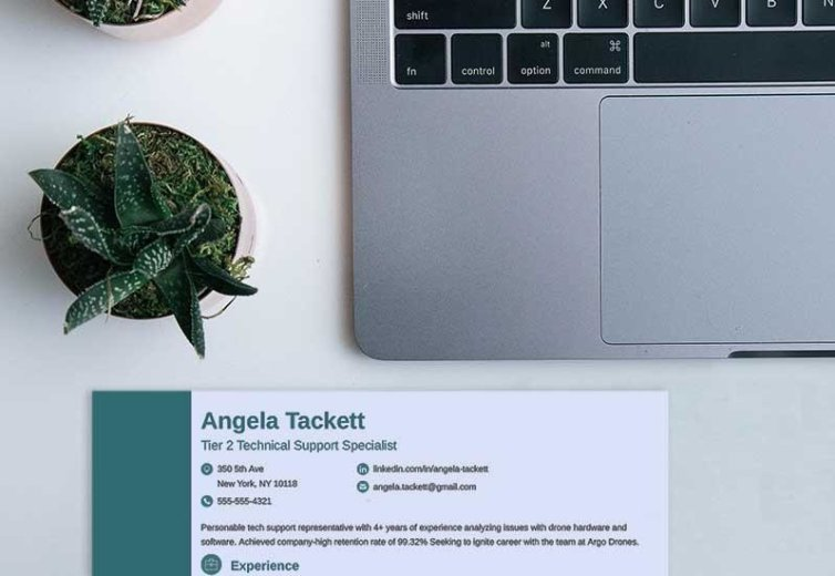Resume Header Examples (20+ Professional Headings)
