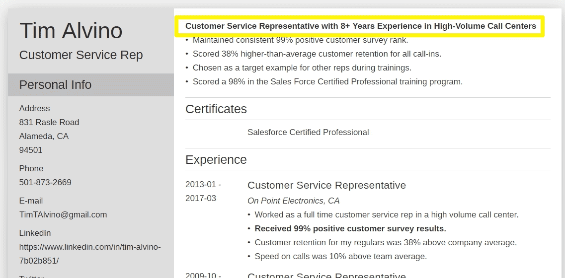 resume title examples for customer service