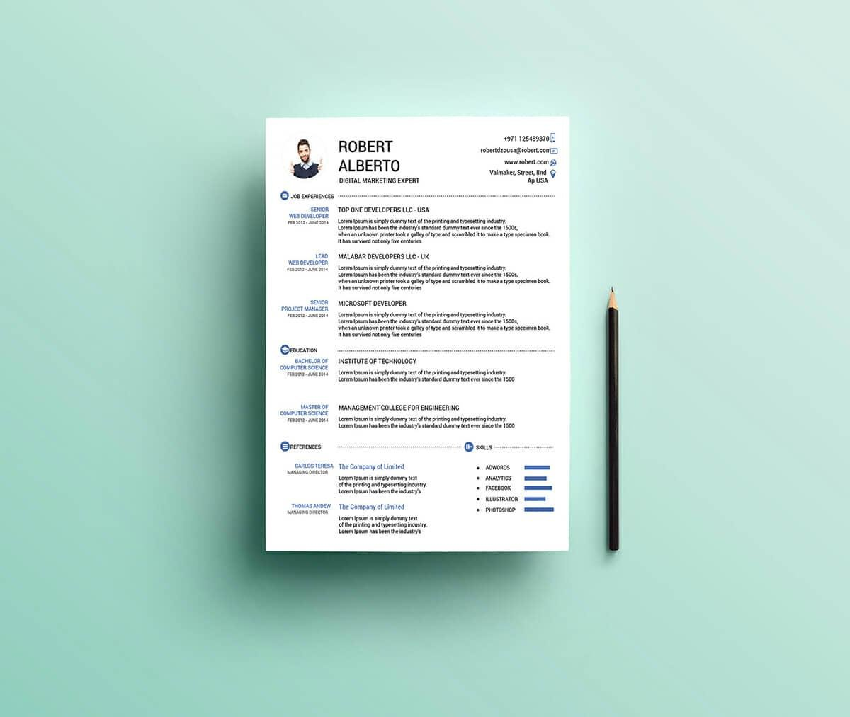 Free Resume Template For Word With Picture  Free Resume Word Templates