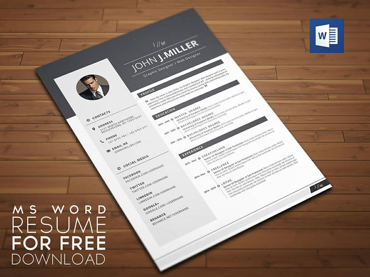Resume Templates For Word Free  Examples For Download