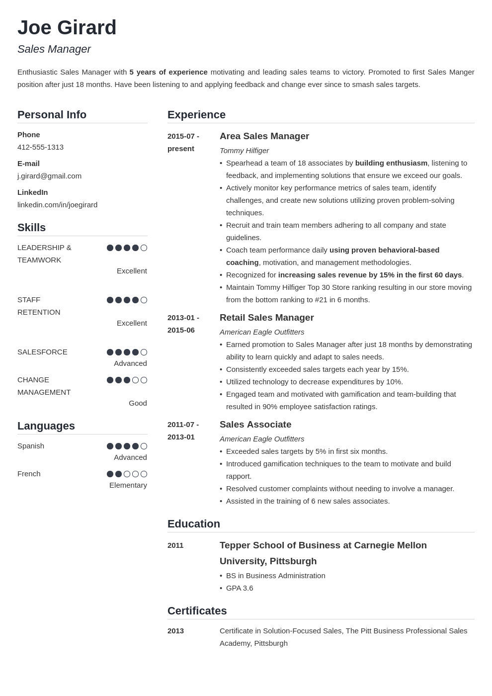 sales manager resume example template simple