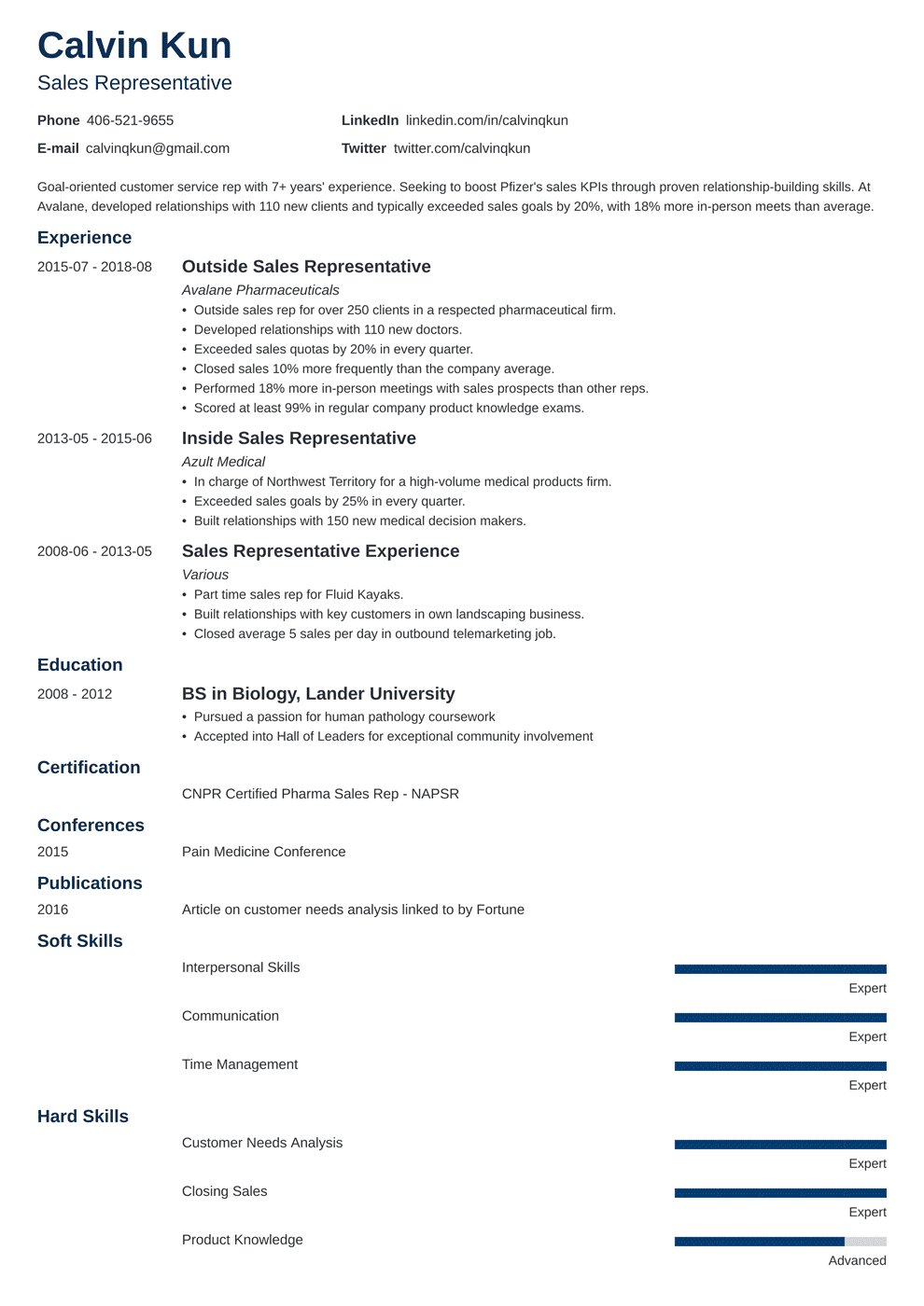 sales representative resume sample writing guide 20 examples