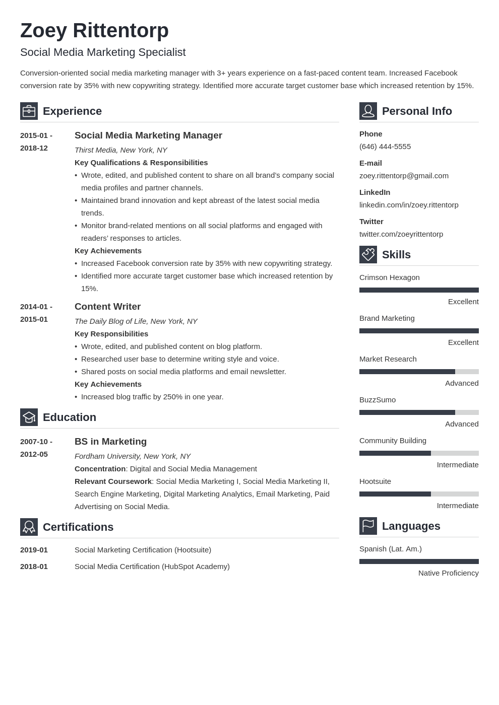 social media resume example template vibes