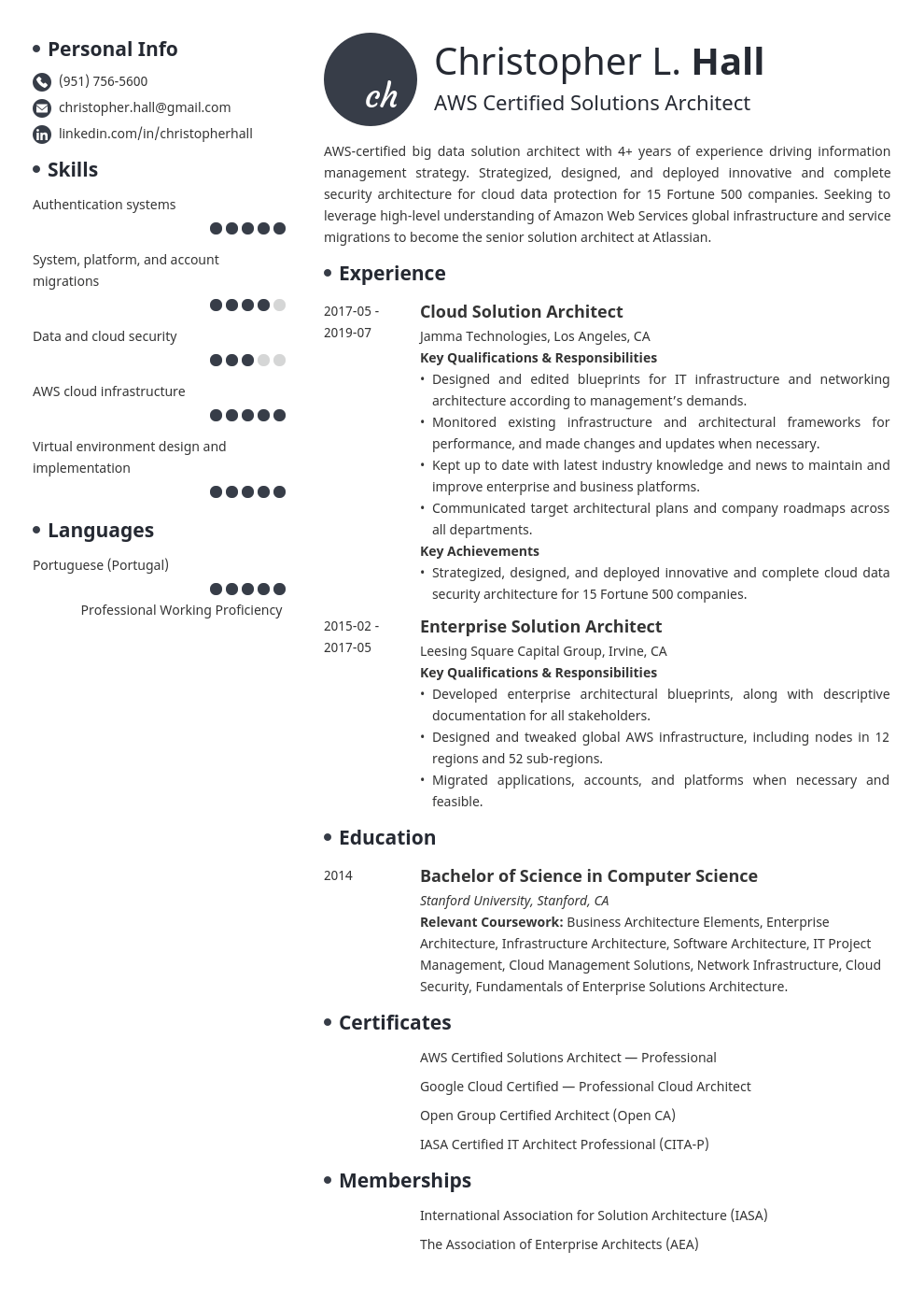 solution architect resume example template initials