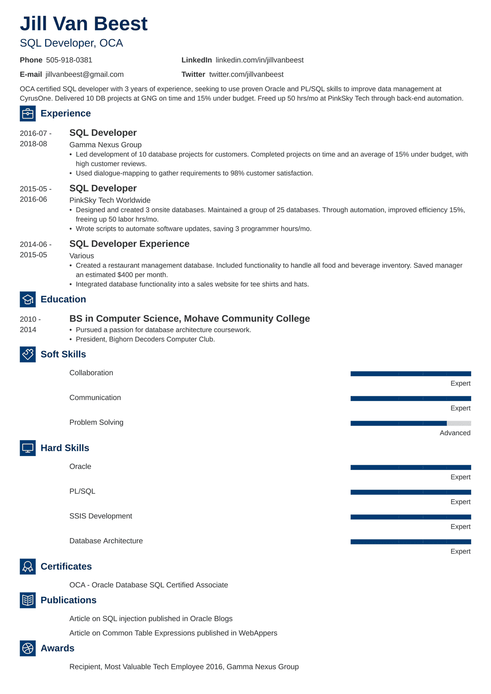 SQL Developer Resume Sample And Complete Guide 20 Examples