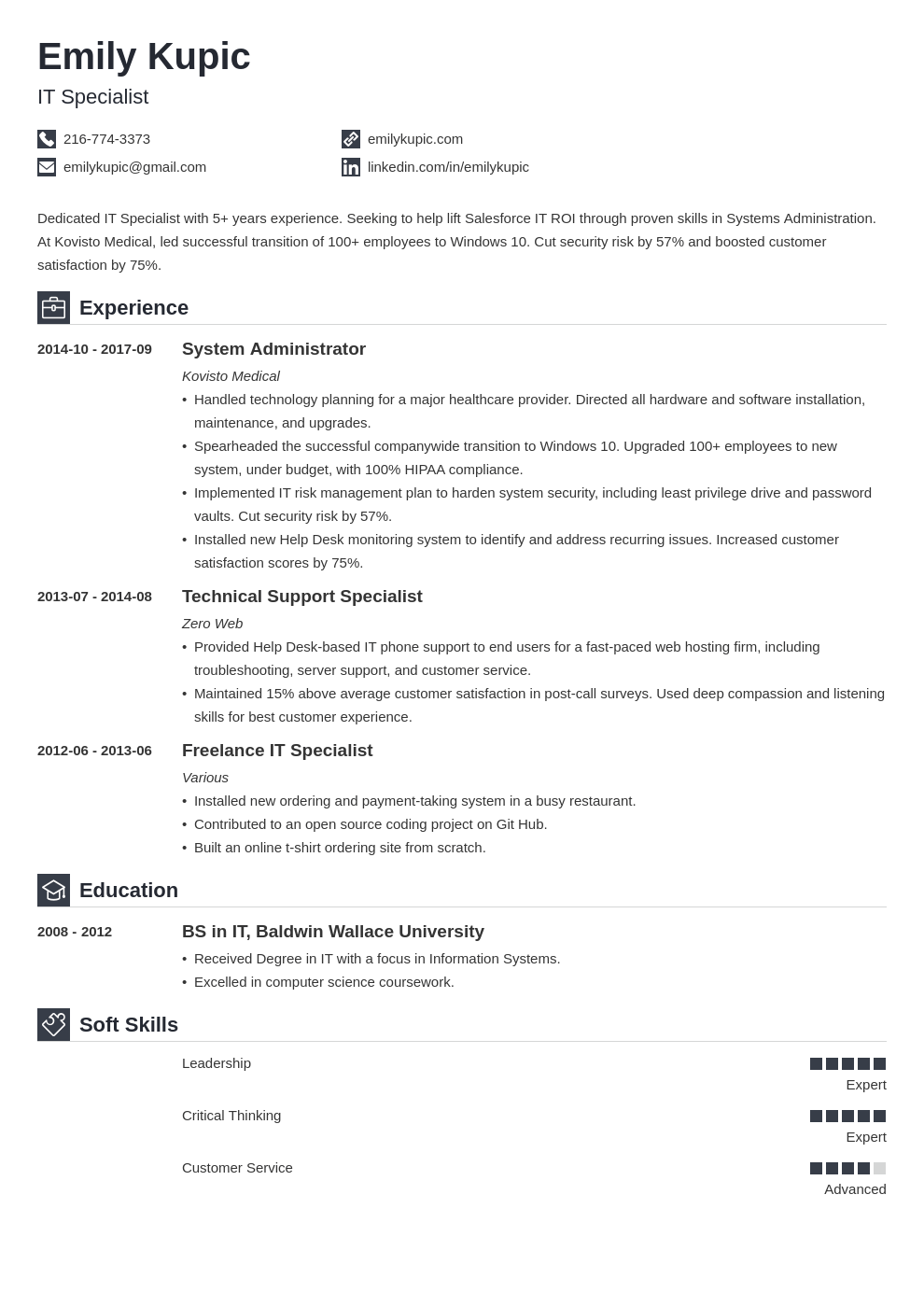 technical resume example template iconic
