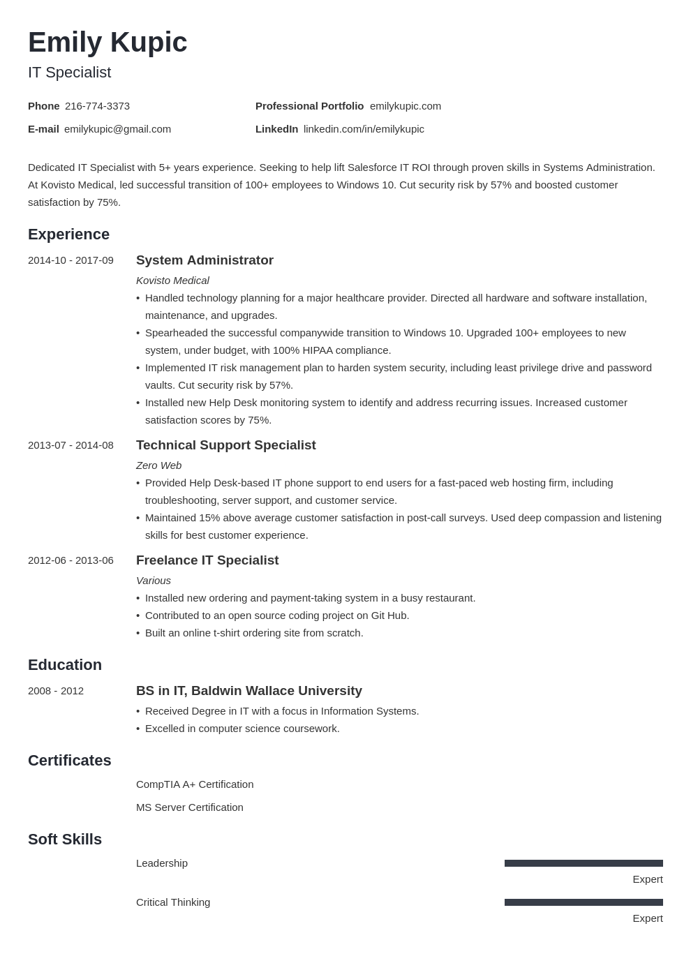 technical resume example template minimo