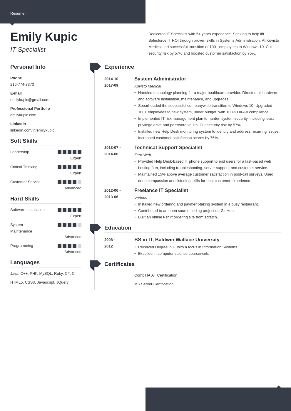 technical resume example template modern
