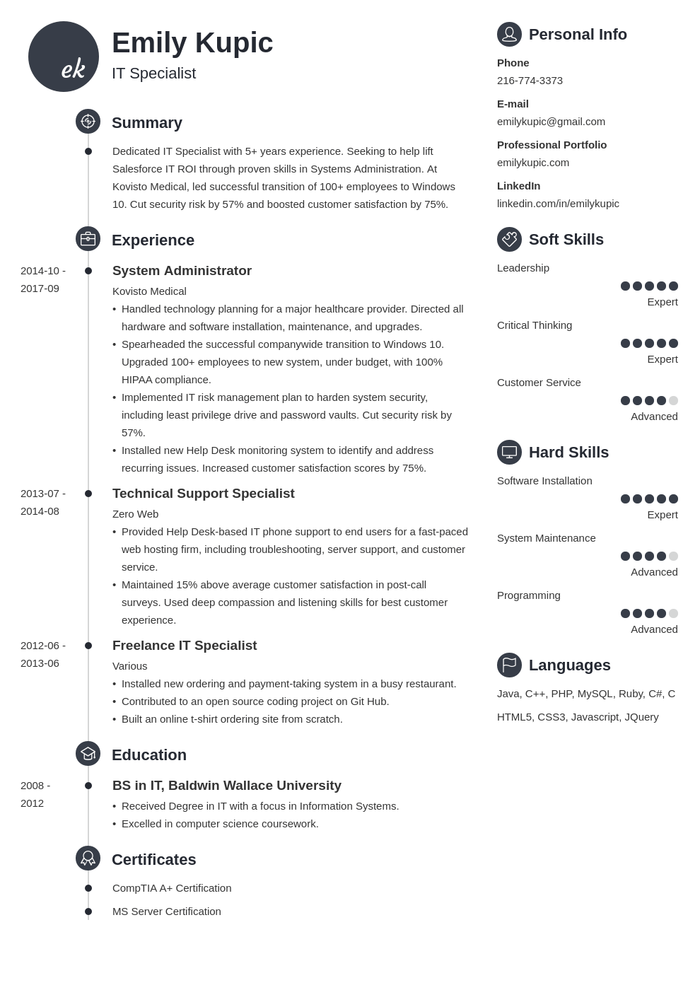 technical resume example template primo
