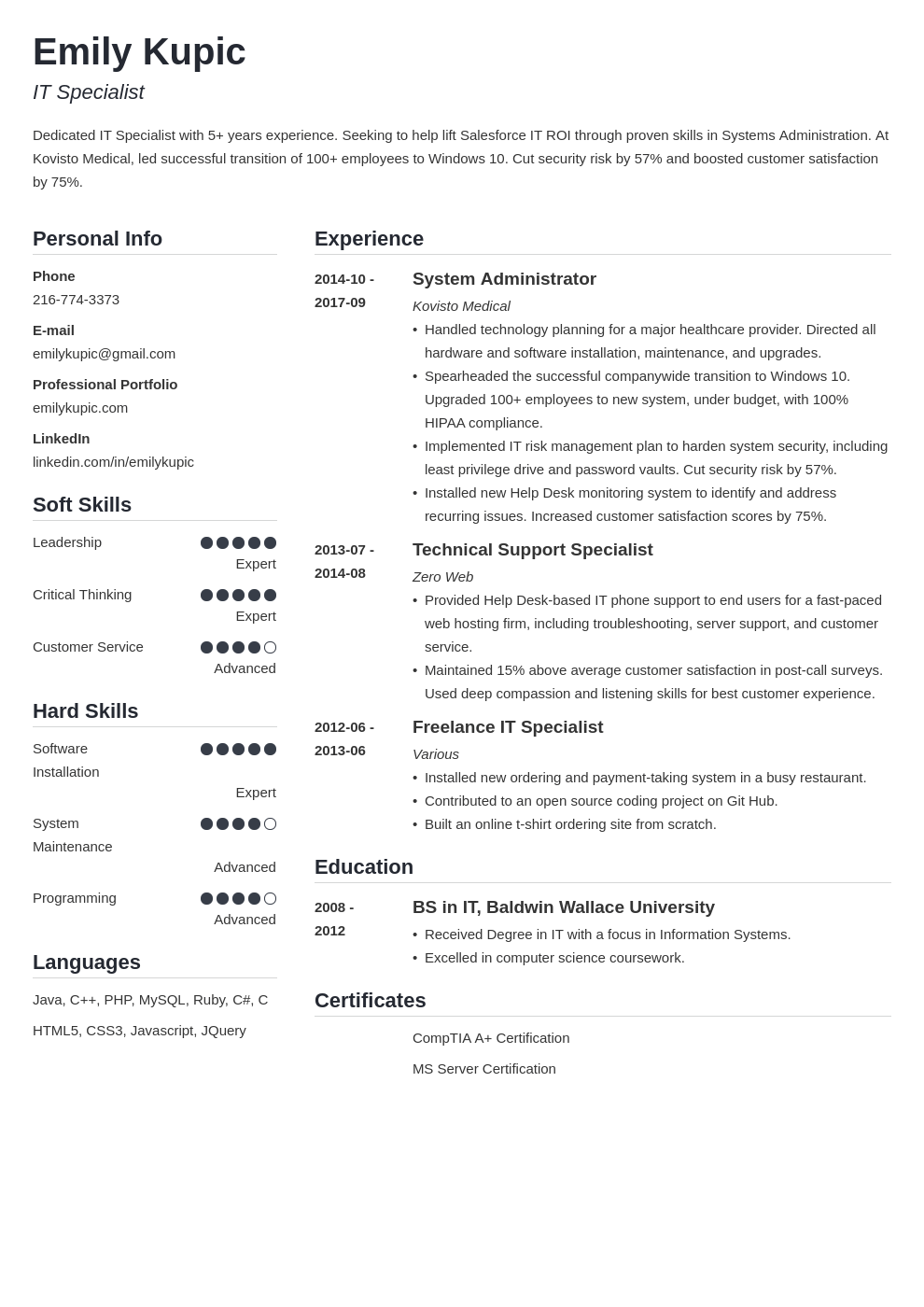 technical resume example template simple