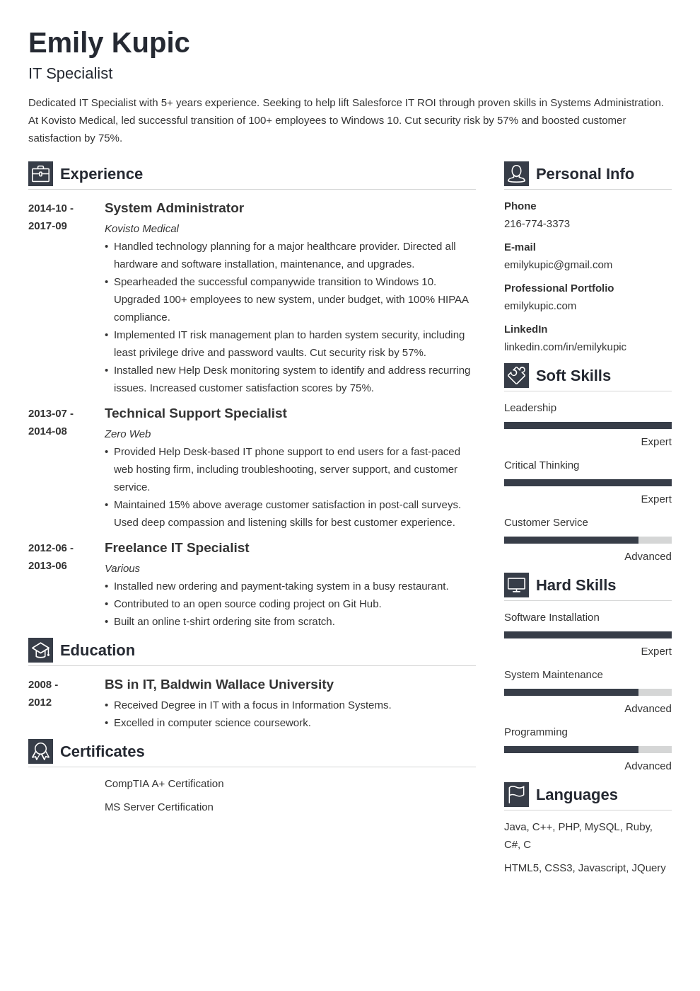 technical resume example template vibes