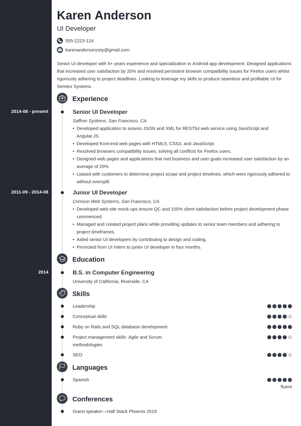 ui developer resume example template concept