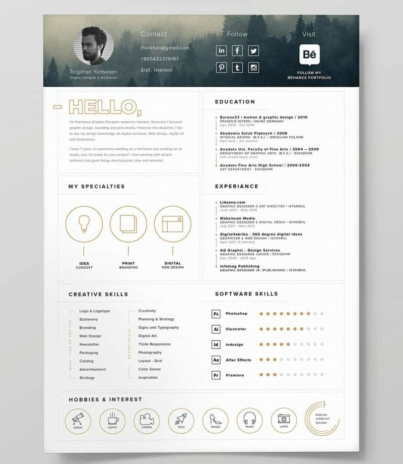 unique resume template free example