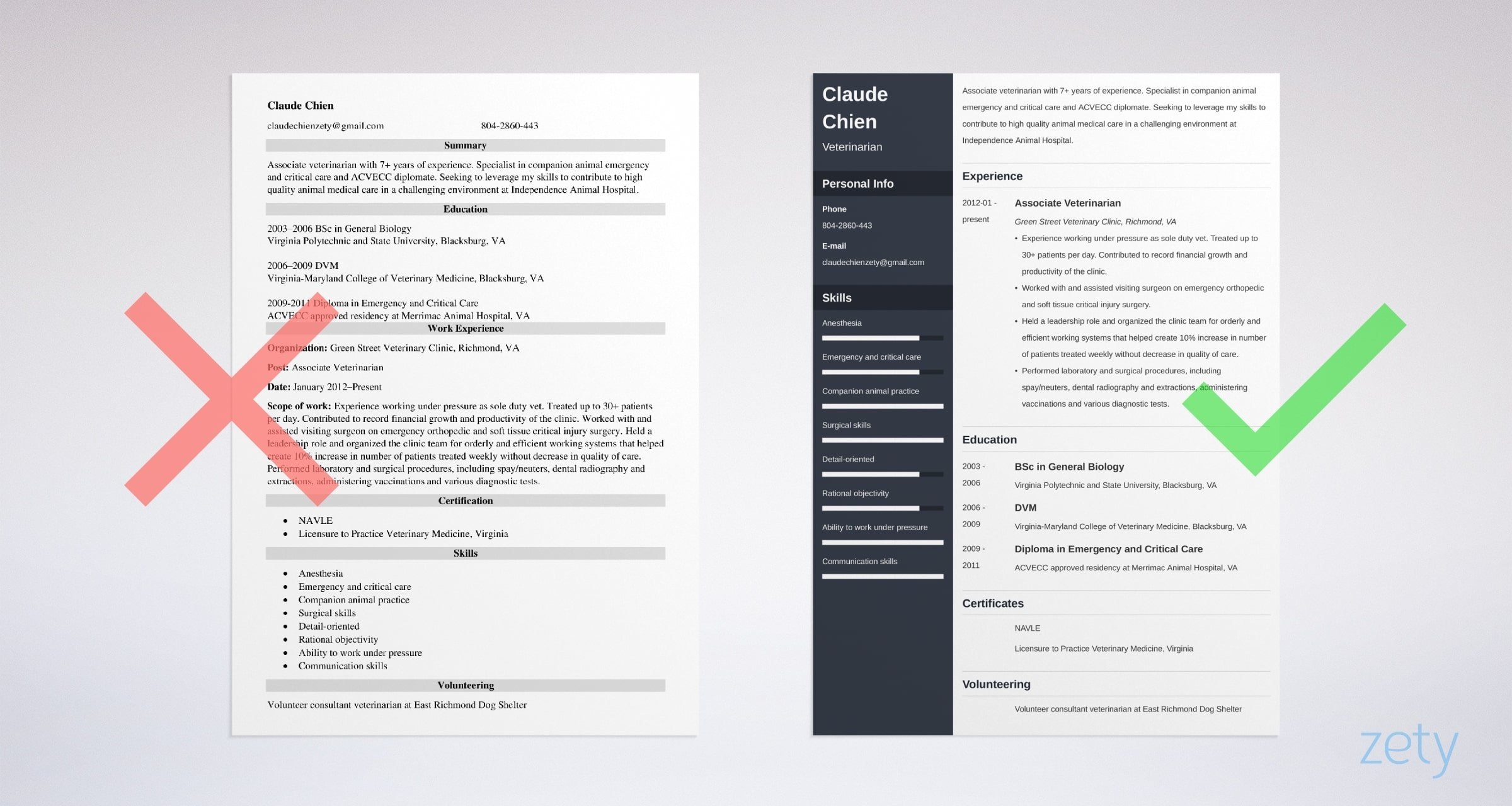 veterinarian resume templates