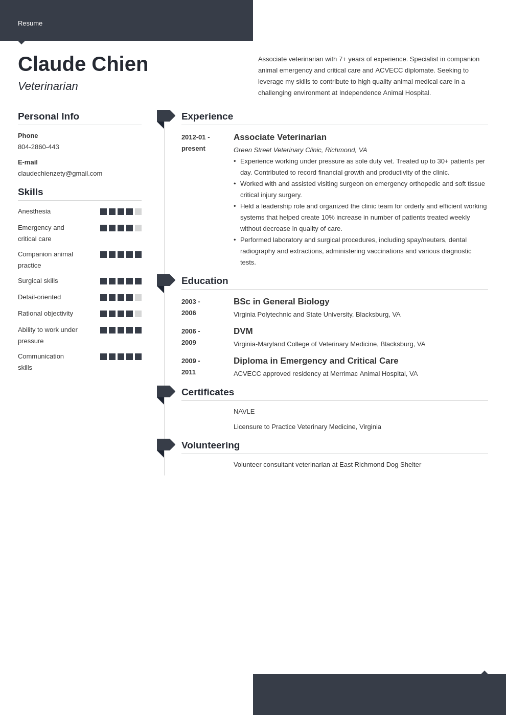 veterinarian resume example template modern