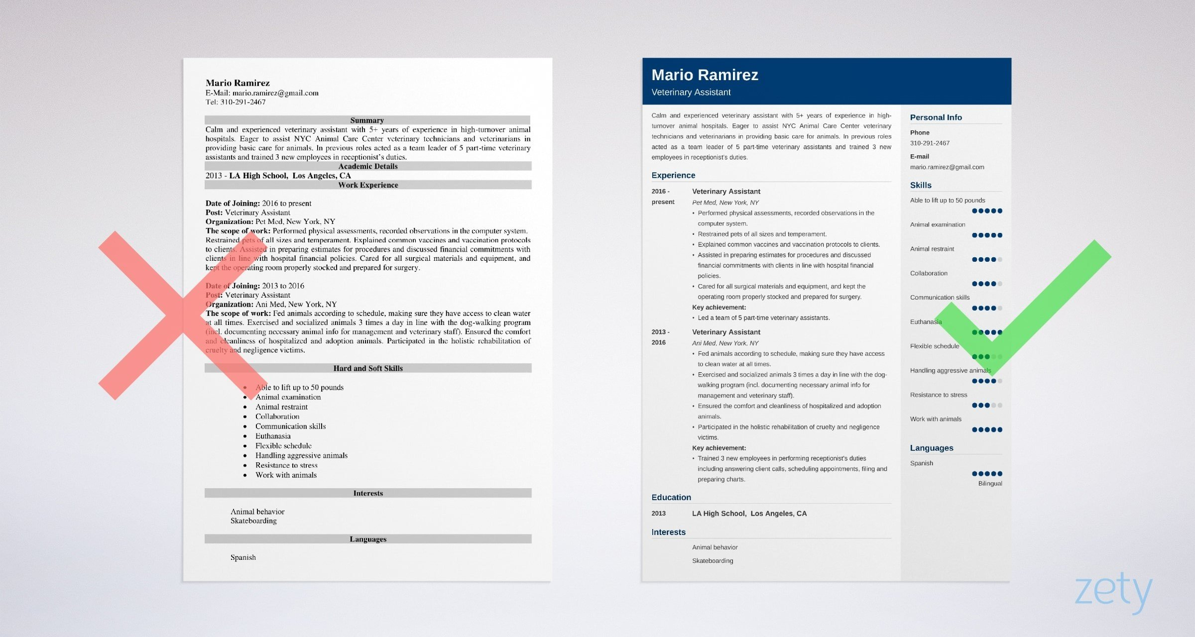 veterinary assistant resume templates
