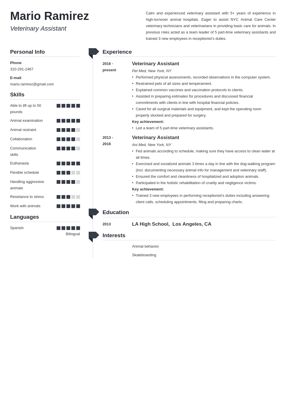 veterinary assistant resume example template muse