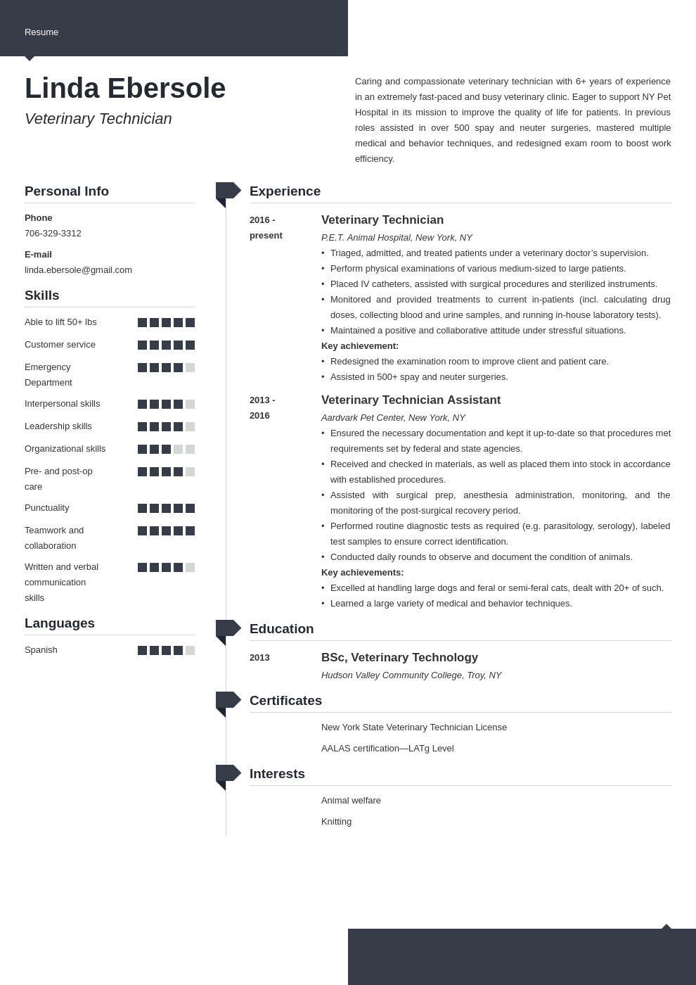 veterinary technician resume example template modern