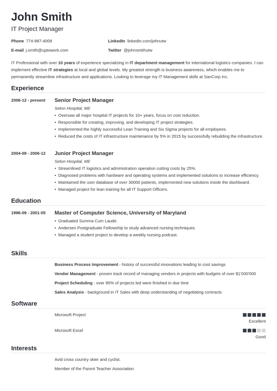 Professional Resume Template Nanica